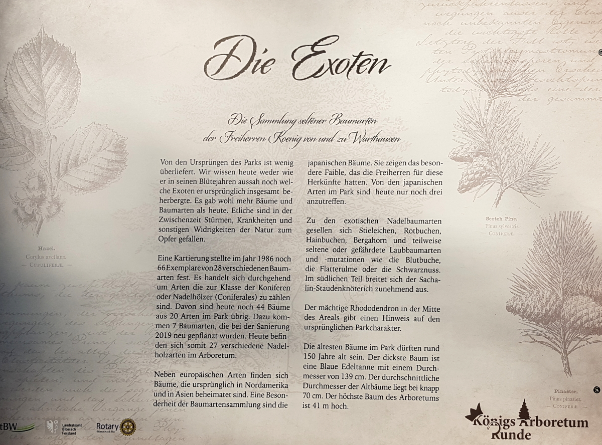 Informationen über den Exotenwald