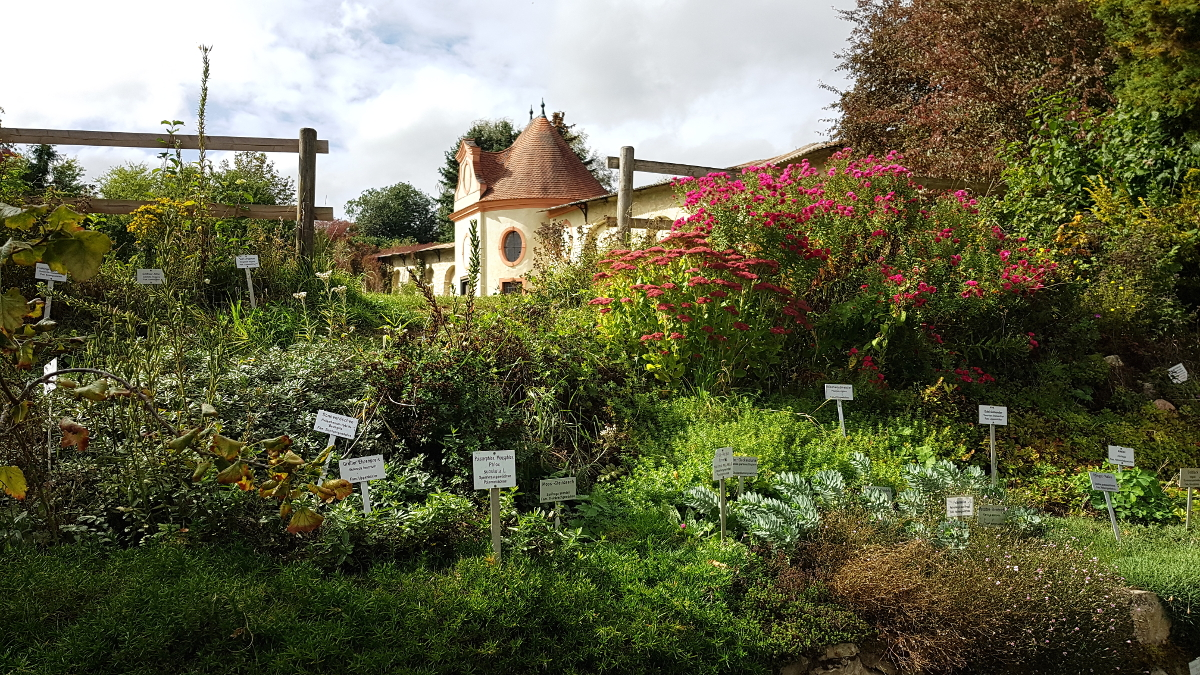 Blick aus dem Garten