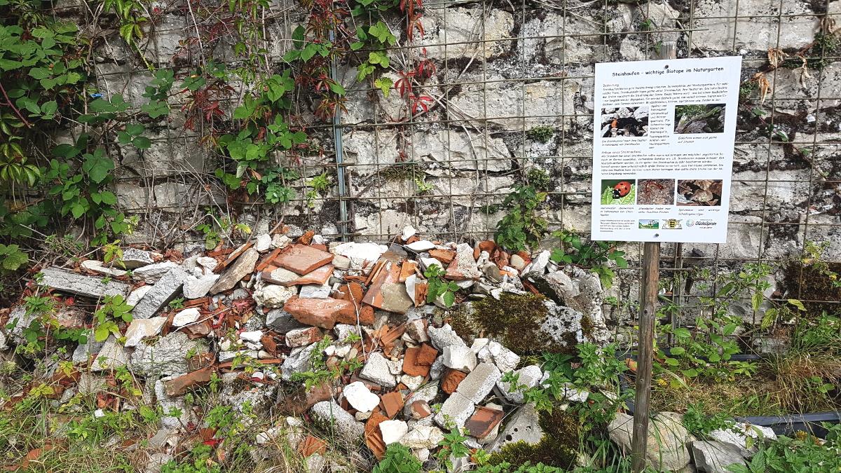 Steinhaufen, Biotop im Naturgarten für Insekten und Reptilien