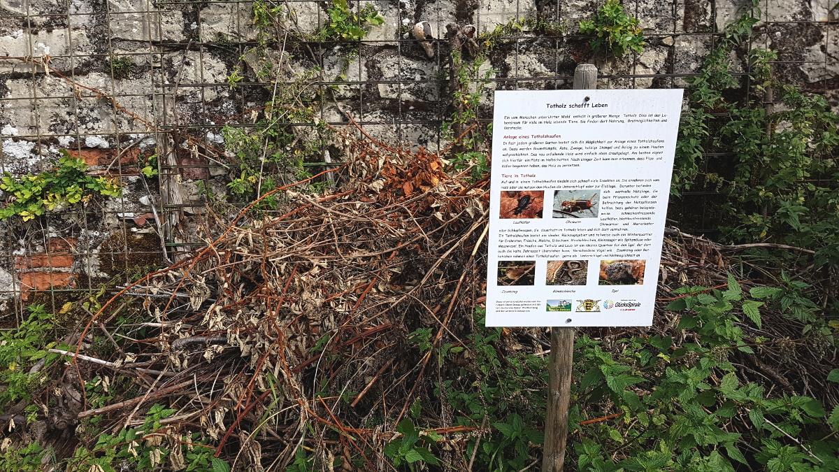 Totholzhaufen für Igel, Reptilien, Wiesel und viele Insekten